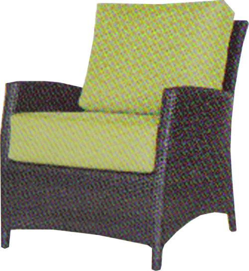 Palm Harbour Club Chair